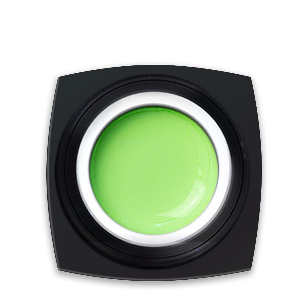 Gel Colorat Jacquelines Green Dress